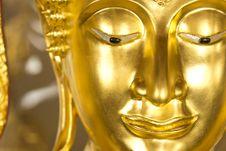 Free Buddha Royalty Free Stock Photo - 23833825