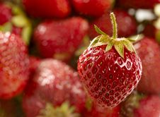 Free Sweet Juicy Strawberry Royalty Free Stock Image - 23836756