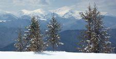 Free Winter Landscape Stock Photos - 23837643