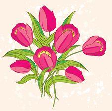 Free Pink Tulips Stock Photo - 23847250