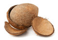 Free Cracked Coconut Stock Images - 23857424