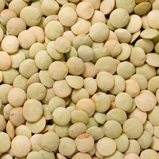 Free Green Lentils Royalty Free Stock Photo - 23864755