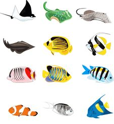 Free Fishes Illustration Royalty Free Stock Photo - 23877195