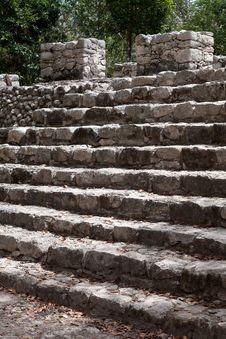 Free Ancient Mayan City Of Coba Royalty Free Stock Image - 23879576