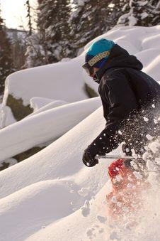 Free Freerider Skiing In Siberia Royalty Free Stock Photos - 23880938