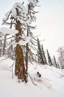 Free Freerider Skiing In Siberia Stock Image - 23880951