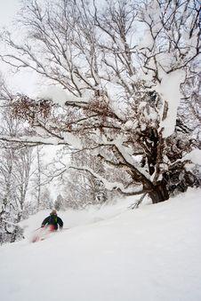 Free Freerider Skiing In Siberia Royalty Free Stock Photo - 23880955