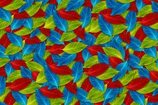 Free Background Of Colorful Leaf Stock Image - 23881761