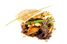 Free Salad With Chicken And Vegetables Stock Images - 23895814