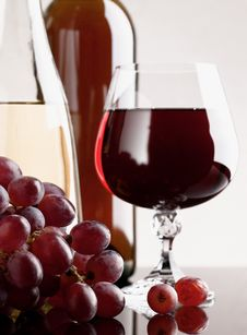 Wine And Grape Stock Photography