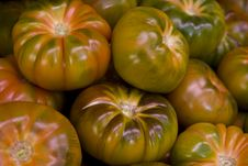 Free Green Tomatoes Stock Photo - 23899320
