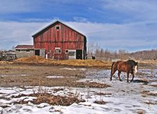 Free Horse Barn Royalty Free Stock Image - 2391376
