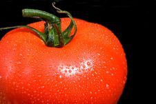 Free Delicious Vine Ripe Tomato Stock Photo - 2391730