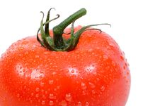 Free Delicious Vine Ripe Tomato Royalty Free Stock Images - 2391809