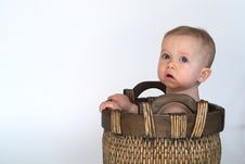 Free Basket Baby Stock Photos - 2397203