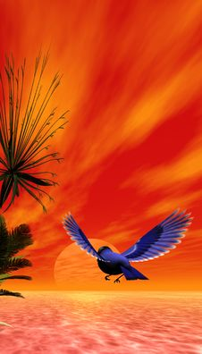 Free Beautiful Tropical Scene Stock Photos - 2397793