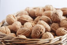 Free Walnuts On The Basket Royalty Free Stock Photo - 2398315