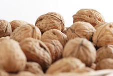 Free Many Of Walnuts Stock Photo - 2398550