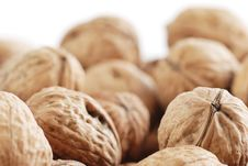 Free Many Of Walnuts Royalty Free Stock Images - 2398559