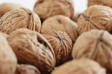 Free Many Of Walnuts Royalty Free Stock Photos - 2398768