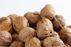 Free Wet Walnuts Stock Photos - 2398783