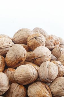 Free Wet Walnuts Stock Photo - 2398840