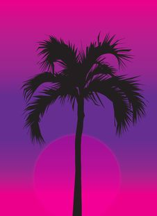 Free Palm Tree At Purple Sunset Royalty Free Stock Photography - 2399557