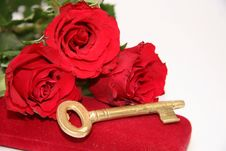 Free Red Roses Stock Images - 23901994