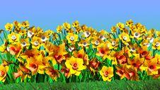 Free Flowers Stock Photo - 23907870