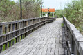 Free Bridge Royalty Free Stock Photo - 23918735