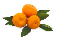 Tangerine Close Up Stock Images