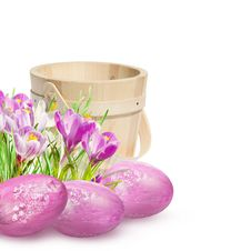 Free Easter Decoration With Pink Crocuses Stock Photo - 23913810