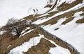 Free Fence Mountain Stock Image - 23921781