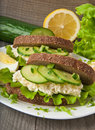 Free Healthy Sandwich Stock Images - 23922814