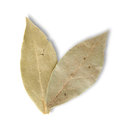 Free Two Bay Leaves Stock Image - 23923281
