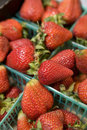 Free Fresh Strawberries In Plastic Baskets Stock Images - 23925344