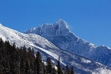 Free Winter In Glacier National Park Royalty Free Stock Photo - 23922745