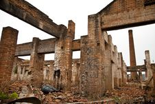 Free Ruins Of A Old Plant Stock Images - 23924624