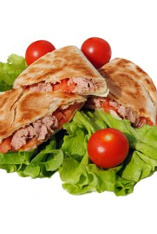 Free Tortilla With Tuna And Tomatoes Stock Photography - 23924872