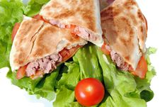 Free Tortilla With Tuna And Tomatoes Royalty Free Stock Photography - 23924897