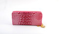 Free Pink Woman Purse Royalty Free Stock Images - 23931309