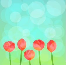 Free Tulips Background Royalty Free Stock Photos - 23930588