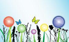 Free Spring Theme Royalty Free Stock Photo - 23935285