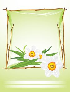 Free Frame With Daffodils On The Abstract Background Stock Image - 23939461