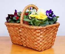 Free Spring Flowers In Old Wooden Basket Royalty Free Stock Photos - 23946968