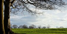 Free Evening Landscape Stock Image - 23947691