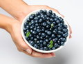 Free Crockery With Blueberries. Stock Images - 23954354