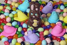 Free Chocolate Rabbit Royalty Free Stock Image - 23953806