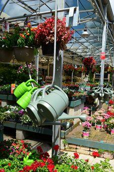 Free Garden Market Stock Photos - 23958363