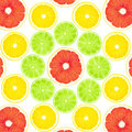 Free Collage From Fruit Royalty Free Stock Photography - 23964777